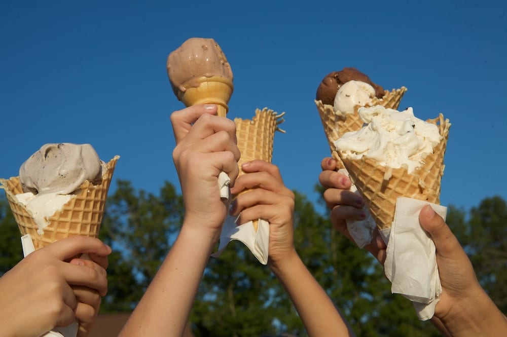 Maple View Farm Ice Cream Cones Orange County Outdoor Summer Activity